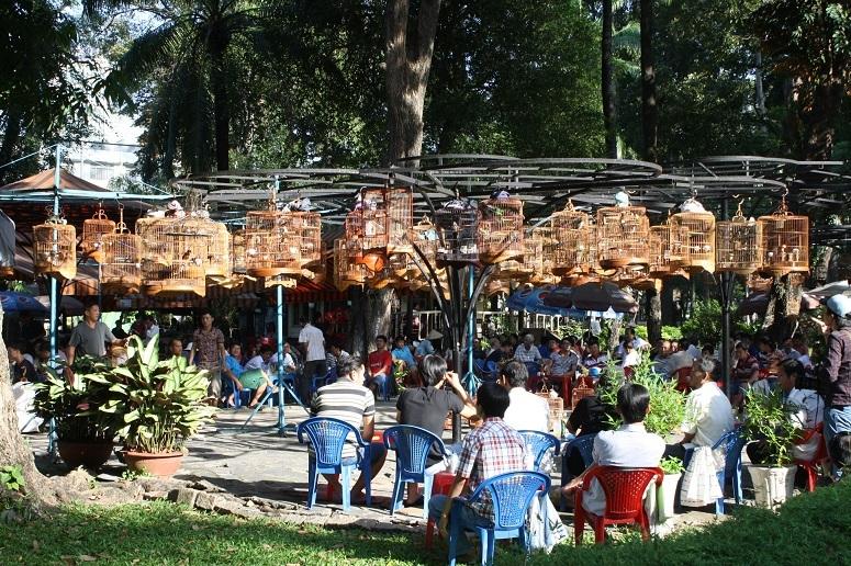 愛鳥家が集う朝のタオダン公園