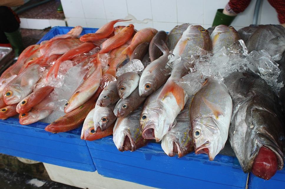 ベンタイン市場の魚売り場