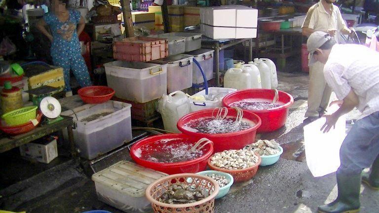 旧市場の魚屋