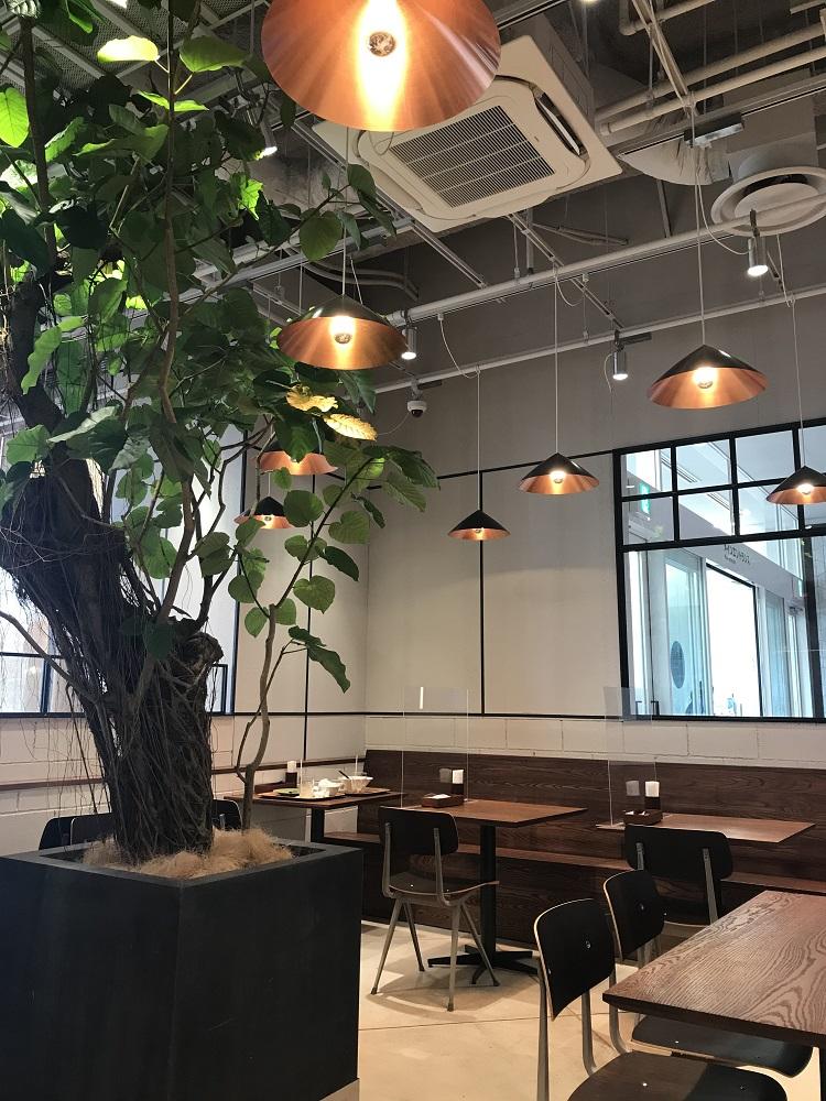 【ららぽーと愛知東郷】エスニック料理を楽しめるカフェ「Monsoon Cafe(モンスーンカフェ)」