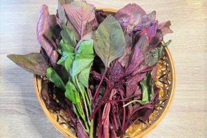 アマランサス(Rau dền)という野菜を買ってみた。